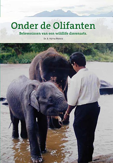 Onder De Olifanten