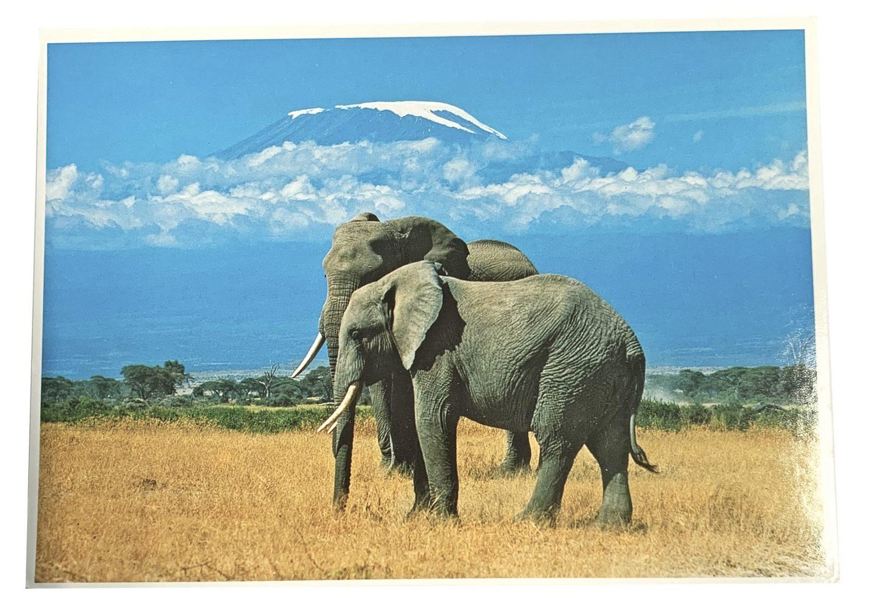 Kaart Kilimanjaro Met Olifanten
